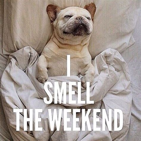 I smell the weekend (source: pinterest)