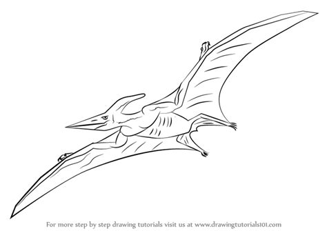 Learn How to Draw a Pterodactyl (Other Creatures) Step by