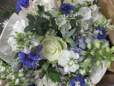 Laura Coleman Flowers: A little while ago now white met blue