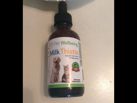 Pet Wellbeing - Milk Thistle for Dogs - Essential
