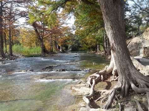 Trout Fishing on the Guadalupe River | GRTU Release Site